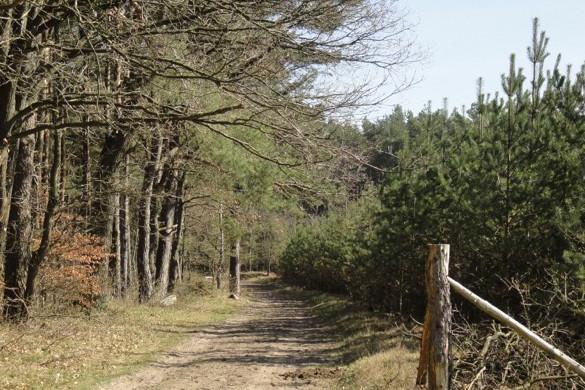 Jagdzentrum Oberfranken - Jagdrevier